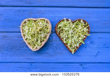 Fresh Lime Linden Tree Blossoms In Heart Shaped Wicker Baskets