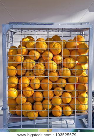 Sunlit Oranges Placed In A Cage Indoors