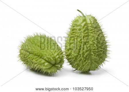 Whole spined fresh chayote fruit on white background