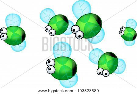 Green Bottle Flies