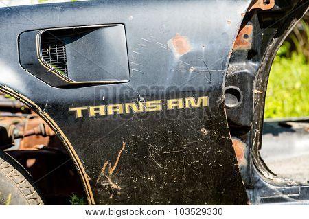 Trans Am Fender