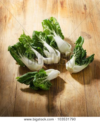 Chinese Cabbage, Bok Choy