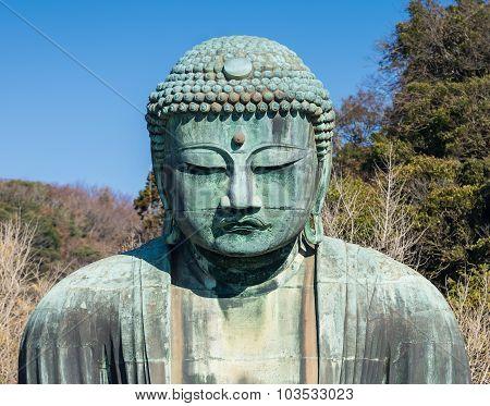 Daibutsu - The Great Buddha Of Kotokuin Temple In Kamakura, Kanagawa, Japan