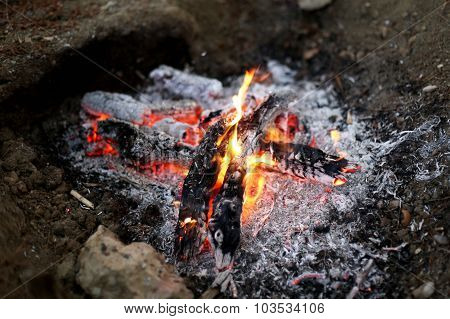 Bright the dying fire with white ash