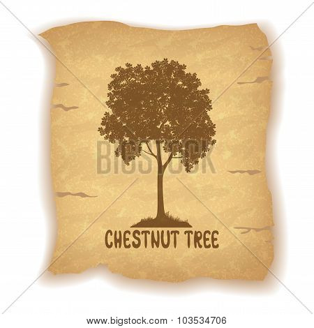 Chestnut Tree on Old Paper
