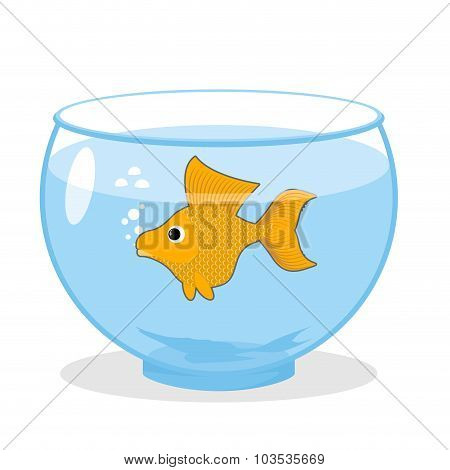 Goldfish In An Aquarium. Symbol Of Fulfillment Of All Desires. Magic Yellow Fish.