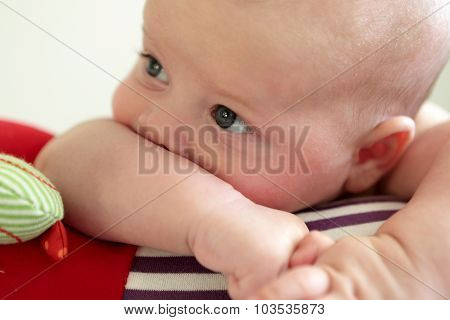 Thinking Baby Lying On A Crawling Roll