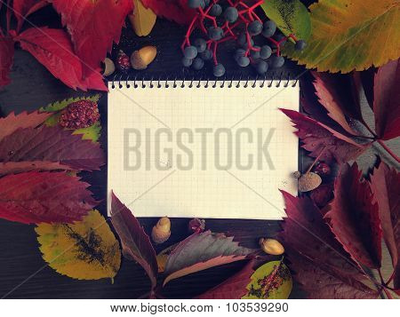 Notepad, autumn leaves on a dark surface