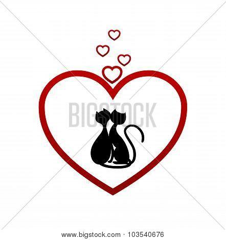 hearts cat