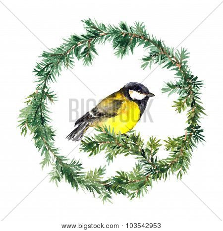 New year wreath - spruce and tit bird. Watercolor
