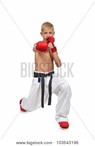 Boy Making Karate Punch