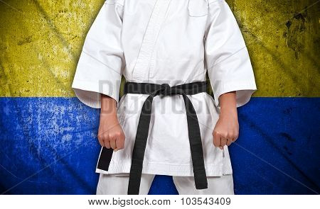 Boy In Kimono And Ukraine Flag