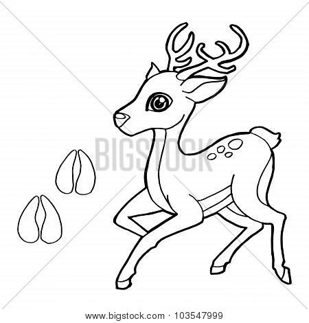 paw print with Deer Coloring Page vector