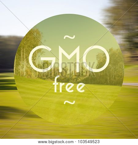 Gmo Free Poster Illustration Of Healthy Food