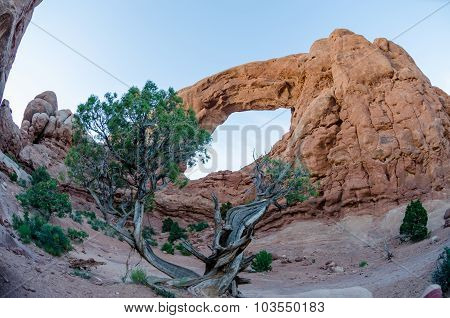 Fisheye Of South Spectacle Arch