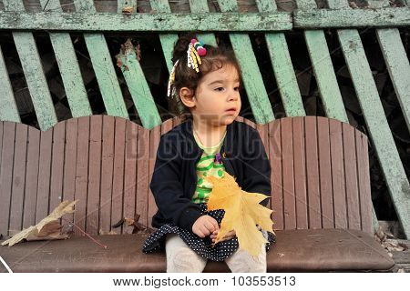 Little Girl Sitting On Bench With Bouquet Of Maple Leaves