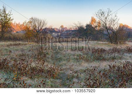 autumnal morning in rural village Pidstavky Sumskaya oblast Ukraine