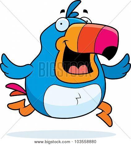 Toucan Running