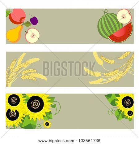 Autumnal banners with watermelon, wheat and sunflowers
