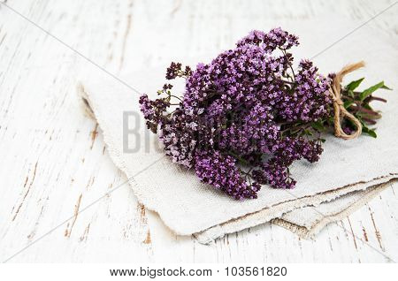 Bunch Of Thyme Herb