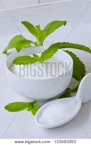 Stevia Powder. Natural Sweetener.