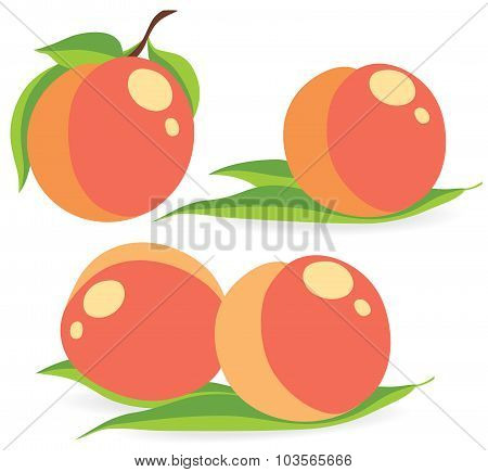 Peaches Vector Illustrations
