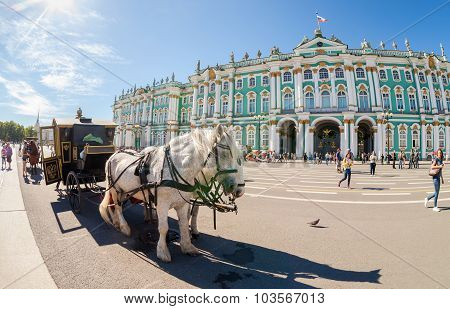 The Carriage, Drawn By Two Horses, Stands On Palace Square In St. Petersburg, Russia