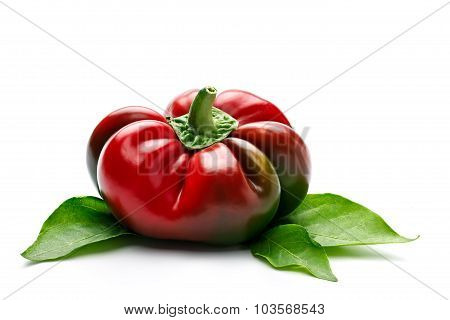 Elliptic Red Pepper With Leaves On White