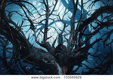 Dark Forest With Thorny Trees And Red Eyes