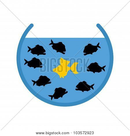 Goldfish And Piranha In Aquarium. Evil Ocean Predators Surrounded  Yellow Good Fish. Hopeless Situat