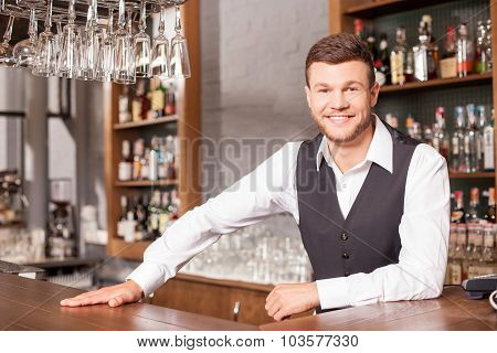Cheerful male bartender is working in pub
