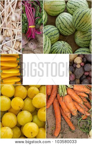 Variety of popular farmers market fruits and vegetables in produce collage