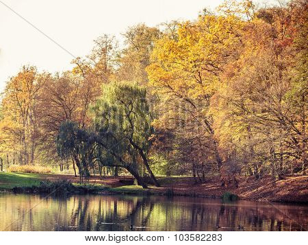 Autumn Park With Pond. Fall Landscape.