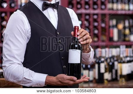 Professional young sommelier is working in liquor store