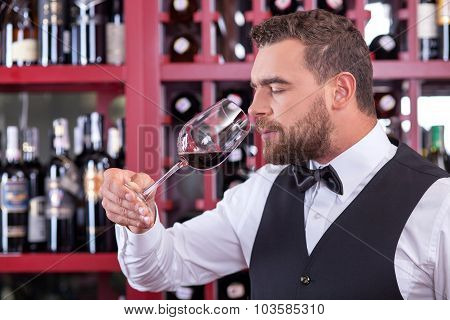 Cheerful male sommelier is analyzing quality of drink