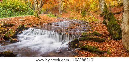 Beautiful Autmn Landcape