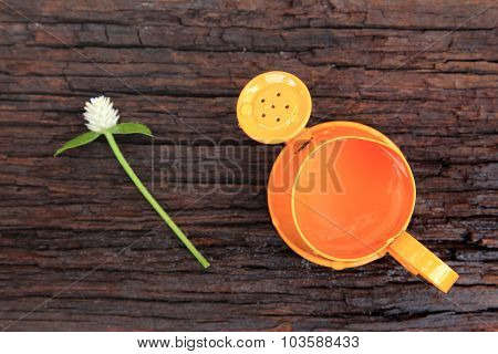 Orange Watering Can And Globe Amaranth