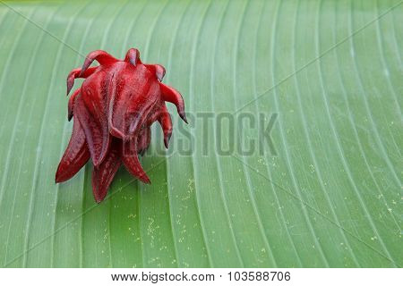Roselle Fruit On Banana Leaf