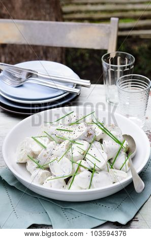 Bowl of salad at a outdoor lunch meal, alfresco dining or at a barbecue