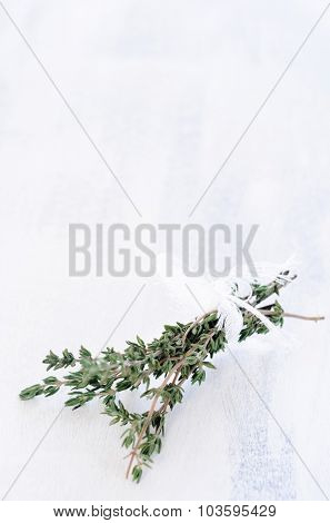 Springs of thyme tied in a bundle on rustic white background, plenty of copy space