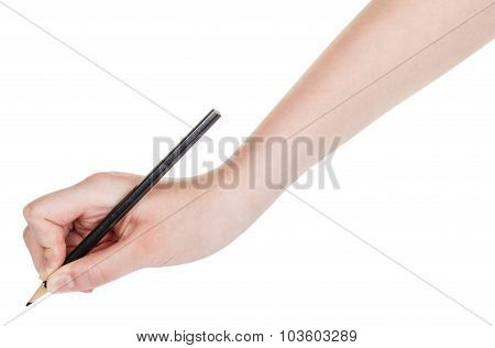 Hand Draws By Wood Black Pencil Isolated