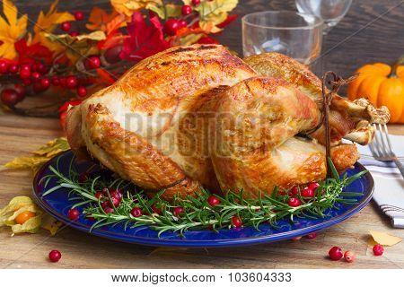 Thnaksgiving turkey