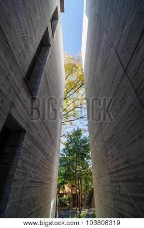 Tokyo, Japan - November 20, 2013: Vertical Void Between A Stone Wall