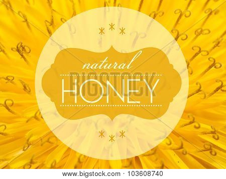 Natural Honey Concept With Flower Macro Background