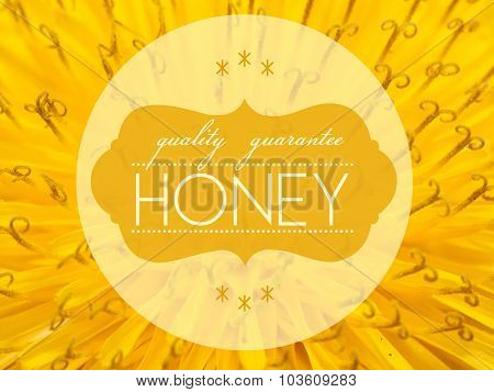 Quality Guarantee Honey With Flower Macro Background