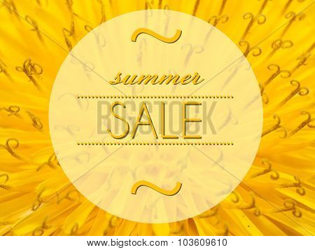 Summer Sale With Flower Macro Background