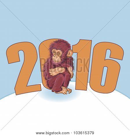 Year of the Monkey. Beautiful hand drawn monkey