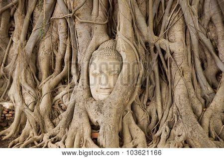 head of image of Buddha