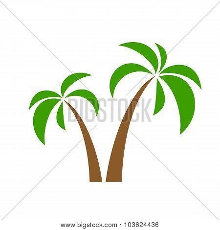 palms on white