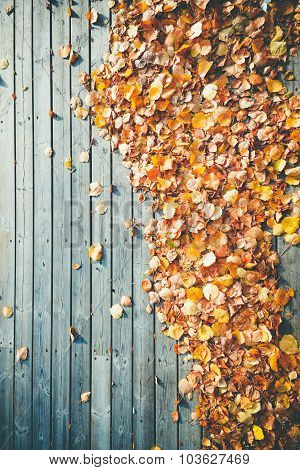 many yellow leaves at wooden terrace floor photographed from abo